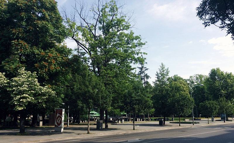 16 park Petar Kočić 2