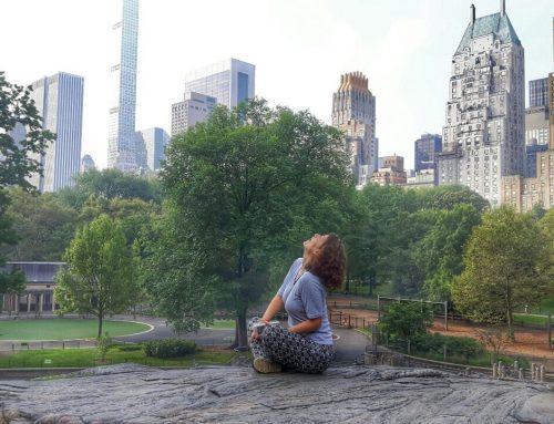 Central park, povratak kući i sumiranje utisaka – finale Amerika